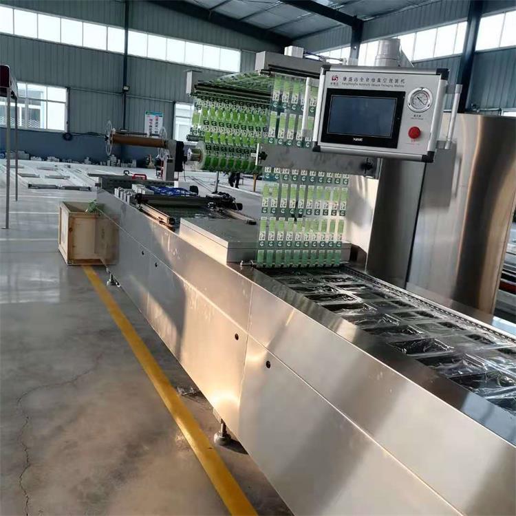 拉伸膜抽空機工廠-吉林拉伸膜真空包裝設備