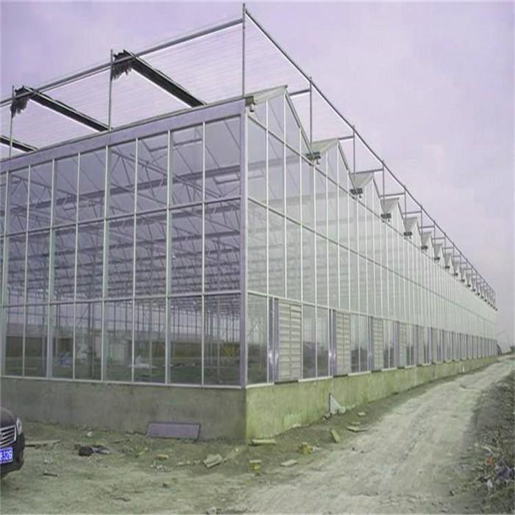 科技人员在封闭的玻璃温室 承杰温控_温室配件设计建造