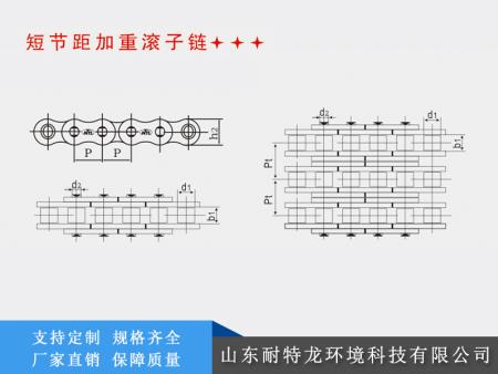 广东tu宰设备链条xinghao_优良的输送链条供应信息