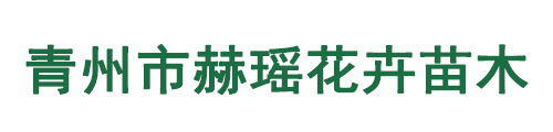 青州市赫瑶花卉苗木