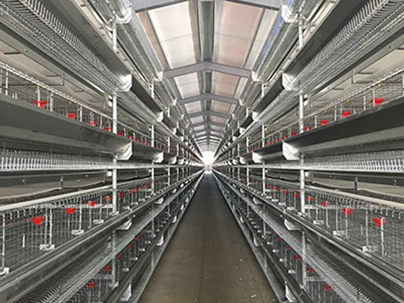 养鸡方管水线-养鸡水线管厂家-养鸡水线管价格