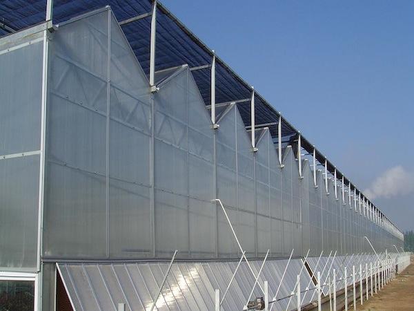 連棟大棚溫室