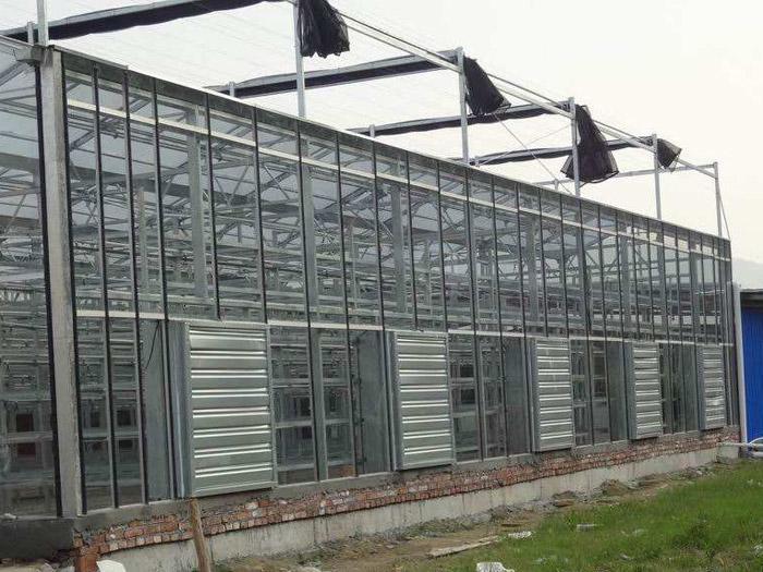 鸟巢温室-钢构温室造价-钢构温室承建