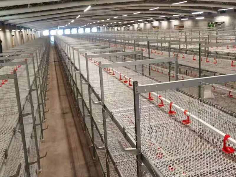养殖设备||层叠鸡笼