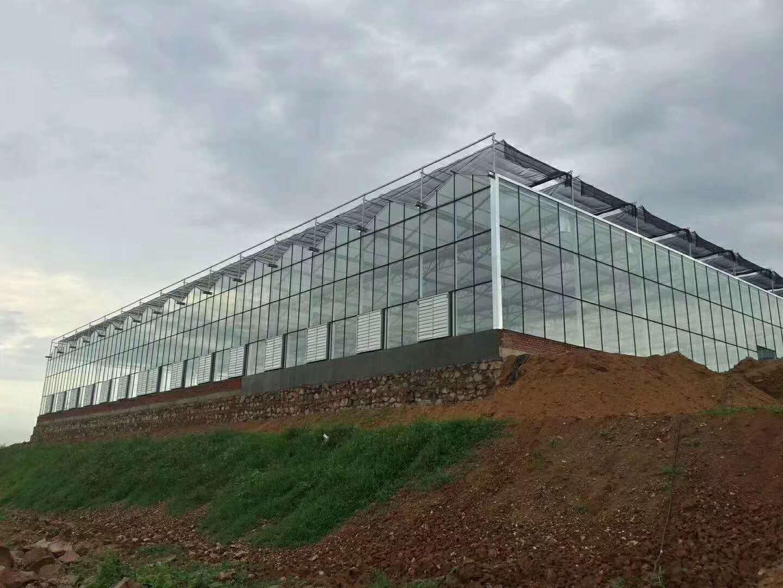 四川保溫玻璃溫室-湖南保溫玻璃溫室安裝-湖南保溫玻璃溫室報價