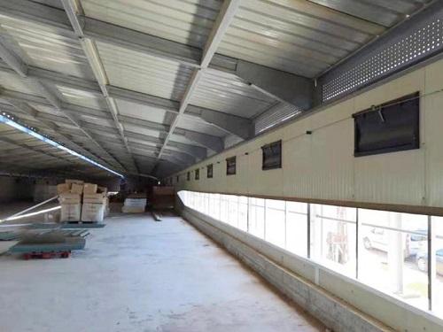 家禽養殖設備供應商-自動化籠養設備生產廠家