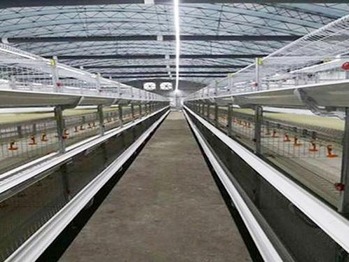 養殖燈帶制造廠家-內蒙雞舍燈帶-廣州雞舍燈帶