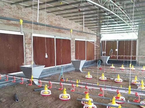 养殖水线料线厂家-山西养殖场料线-陕西养殖场料线
