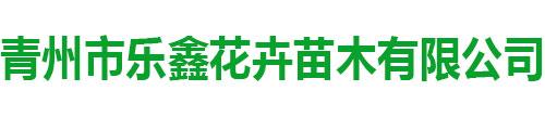 青州市乐鑫花卉苗木千亿平台