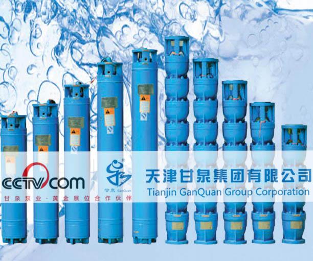 天津甘泉深井泵扬程-河北天津甘泉深井泵供应商是哪家产品大图