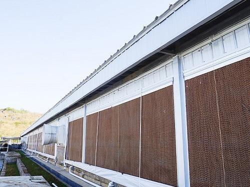 水帘墙-铝合金水帘厂家