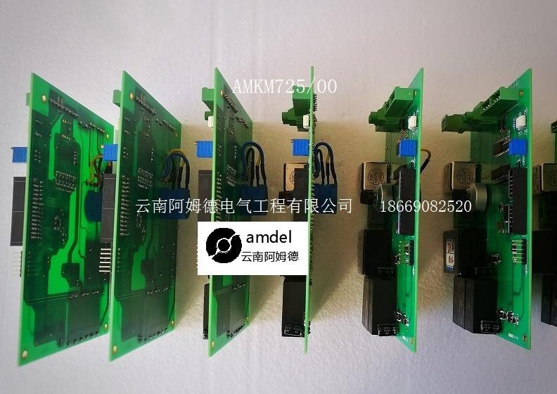 AMKM725阿姆德密度计价格-迪庆AMKM725阿姆德密度计