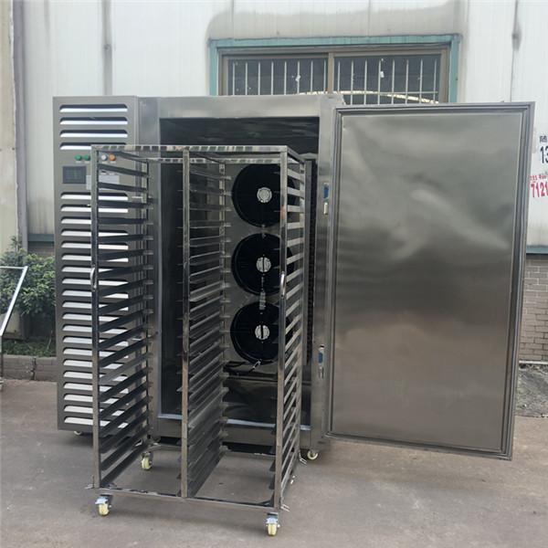 极速冷冻柜/风冷式速冻柜/超低温速冻柜