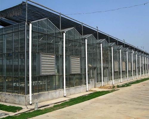 温室厂家-河南玻璃大棚-河北玻璃大棚