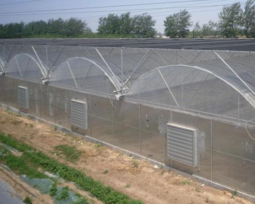 钢管大棚厂家-四川景观温室-安徽景观温室
