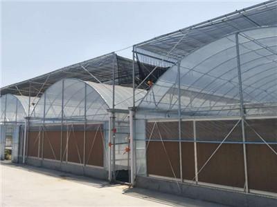 轻钢玻璃温室-轻钢玻璃温室建设-钢结构玻璃温室承建