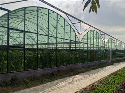 智能温室造价-潍坊花卉大棚-浙江花卉大棚