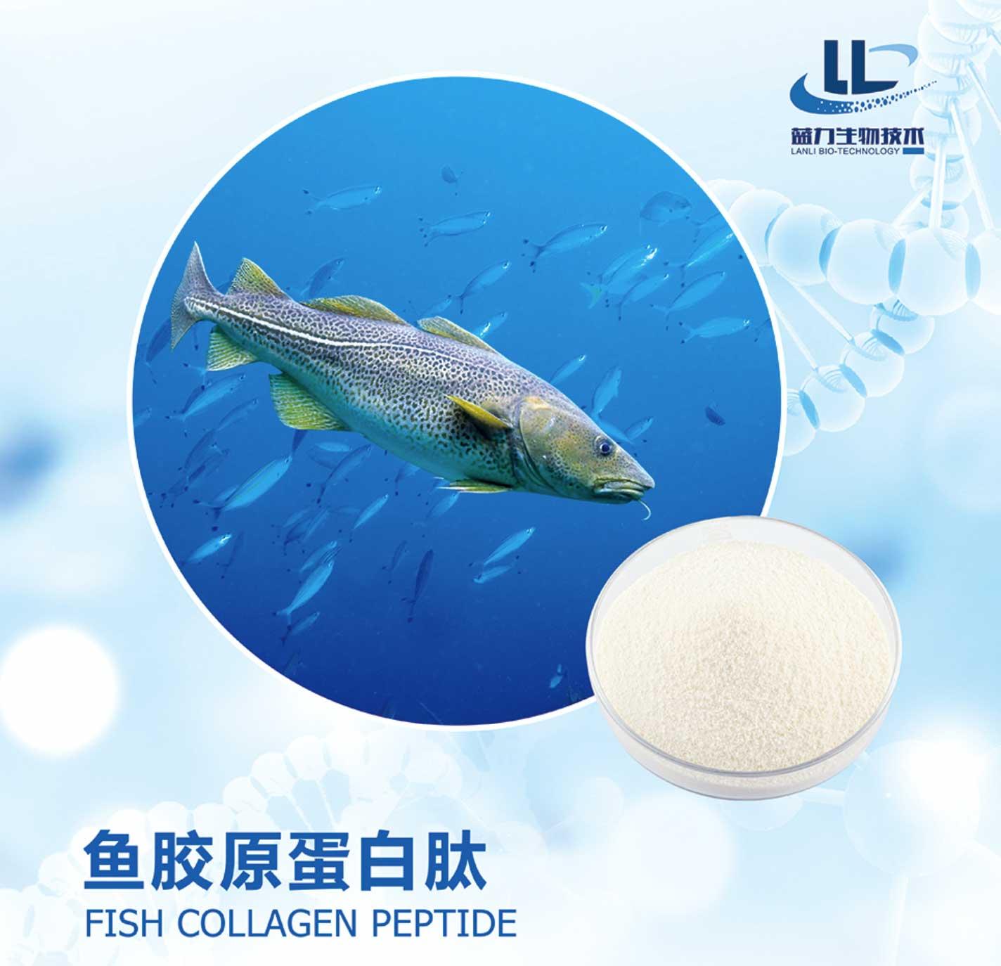 上海食品级鱼胶原蛋白图片