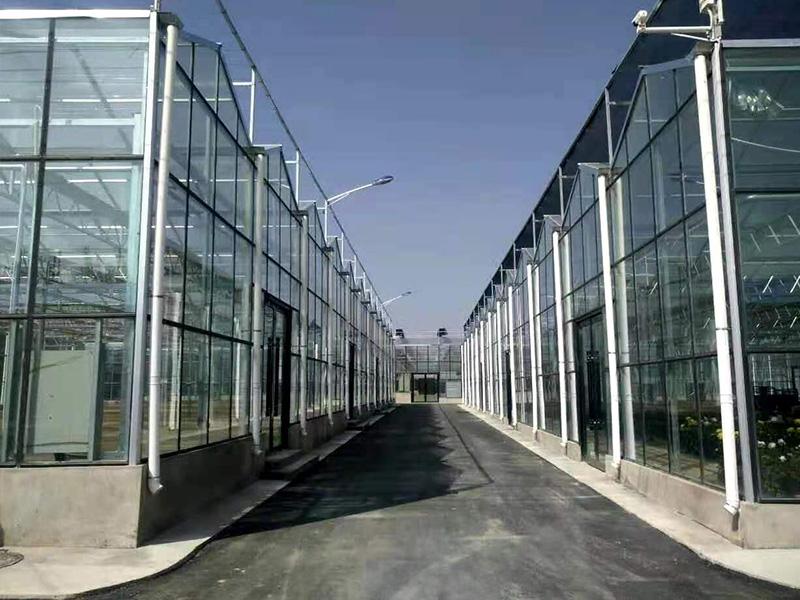 陽光板溫室多少錢-通州育苗棚-廣州育苗棚