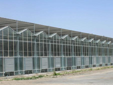 玻璃温室建造-河南玻璃大棚-河北玻璃大棚