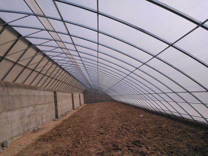 畜牧温室大棚造价-养鸭大棚承建