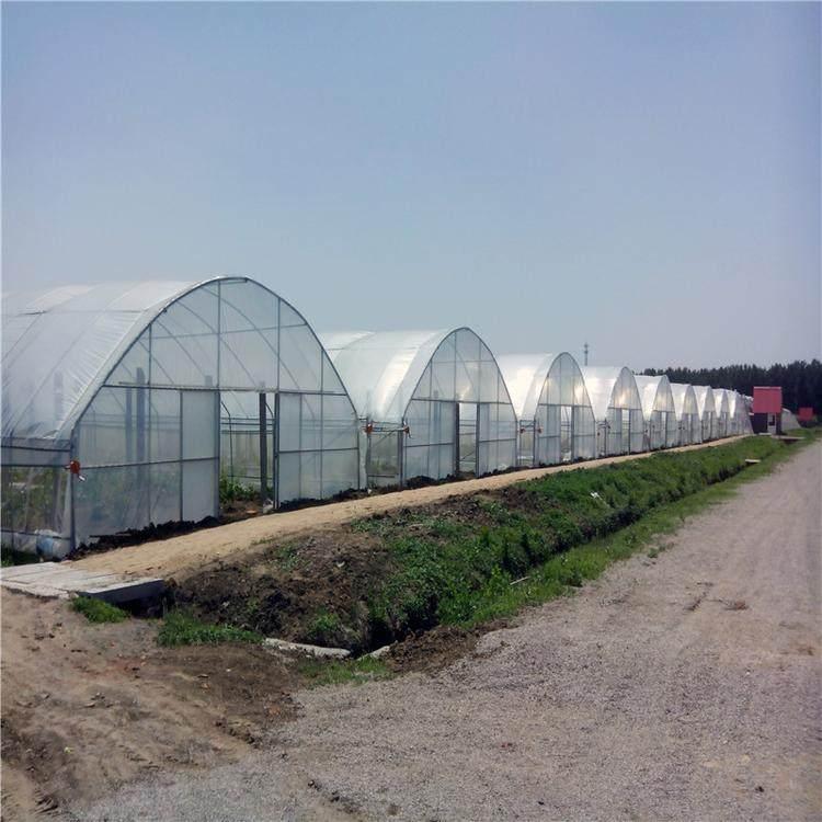 蔬菜大棚建造商-新型蔬菜大棚-智能蔬菜大棚