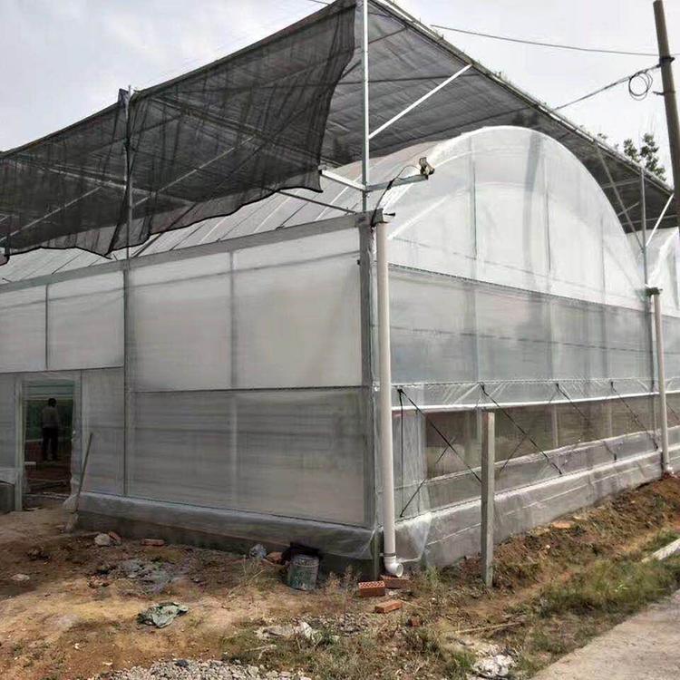 钢结构大棚哪家好-畜牧养殖大棚报价-畜牧养殖大棚设计