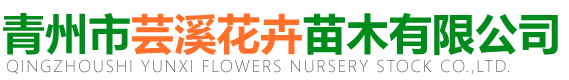 青州市芸溪花卉苗木有限公司