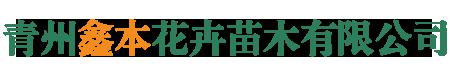 青州鑫本花卉苗木有限公司
