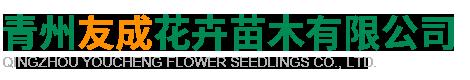 青州友成花卉苗木有限公司