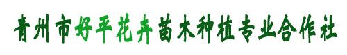 青州市好平花卉苗木种植专业合作社