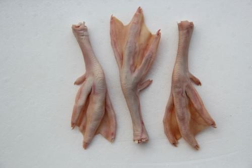 鵝副產品供應-四川鵝副產品-重慶鵝副產品