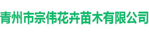 青州市宗伟花卉苗木有限公司