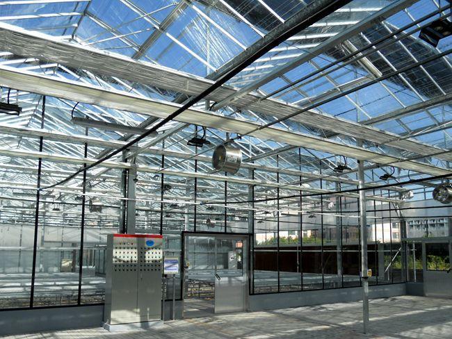 东营农业玻璃大棚造价