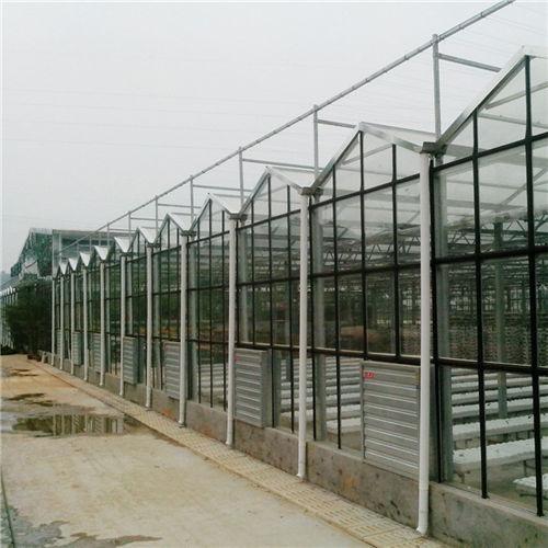 河南智能温室大棚供应