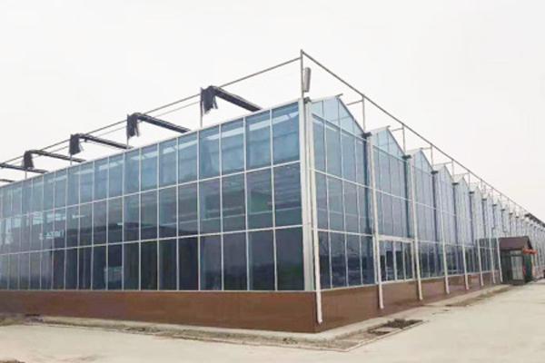 玻璃温室|玻璃大棚