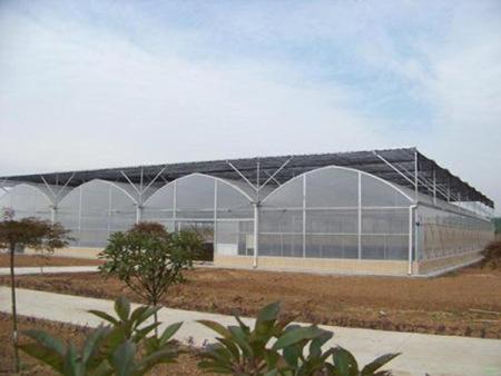 养殖大棚承建-陕西养殖大棚建设-陕西养殖大棚安装
