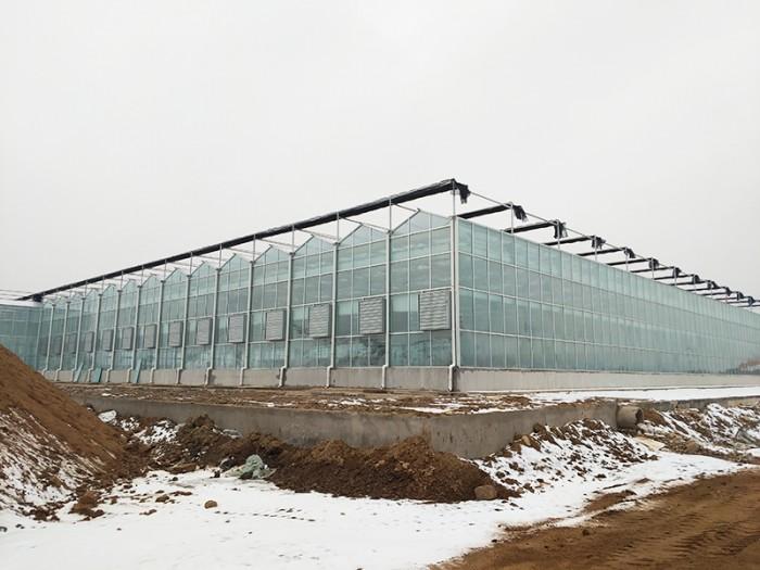 湖北连栋玻璃温室订做