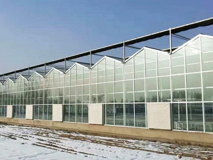 山西生态玻璃温室费用