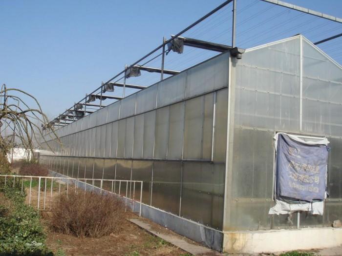 广东阳光板温室厂家