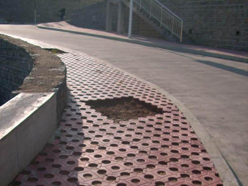 河南草坪砖优点