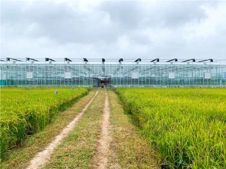 湖北農業智能溫室設計生產