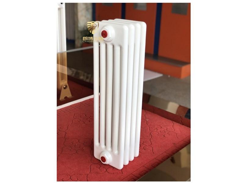 湖南钢五柱暖气片-钢五柱散热器-钢制五柱型暖气片