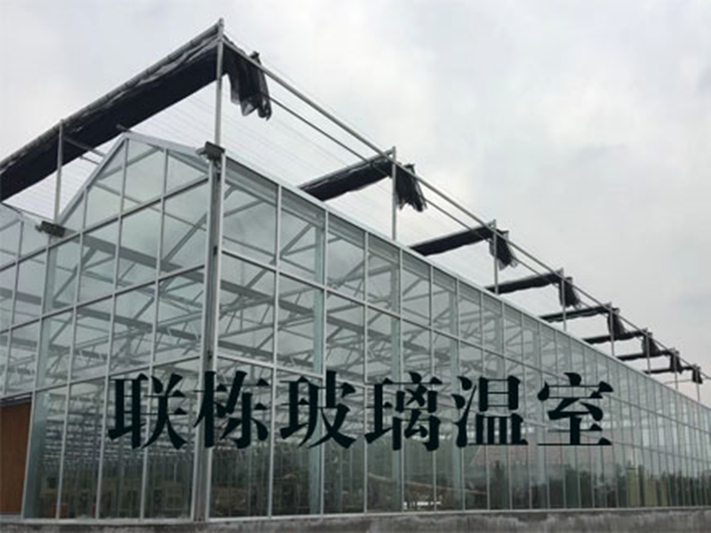天津陽光板玻璃溫室承建