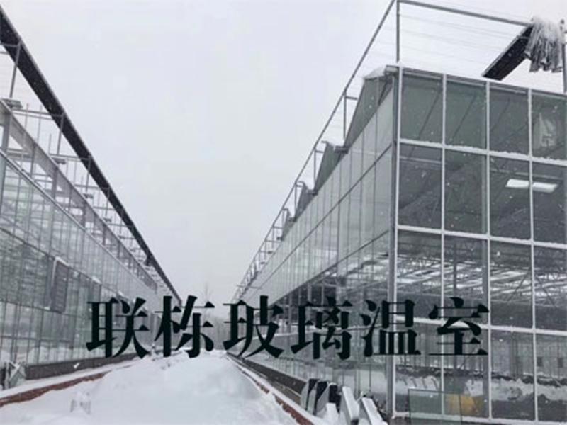 北京溫室大棚建造