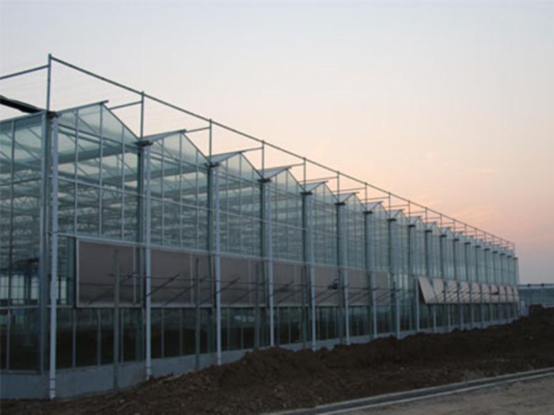 天津輕鋼玻璃溫室承建