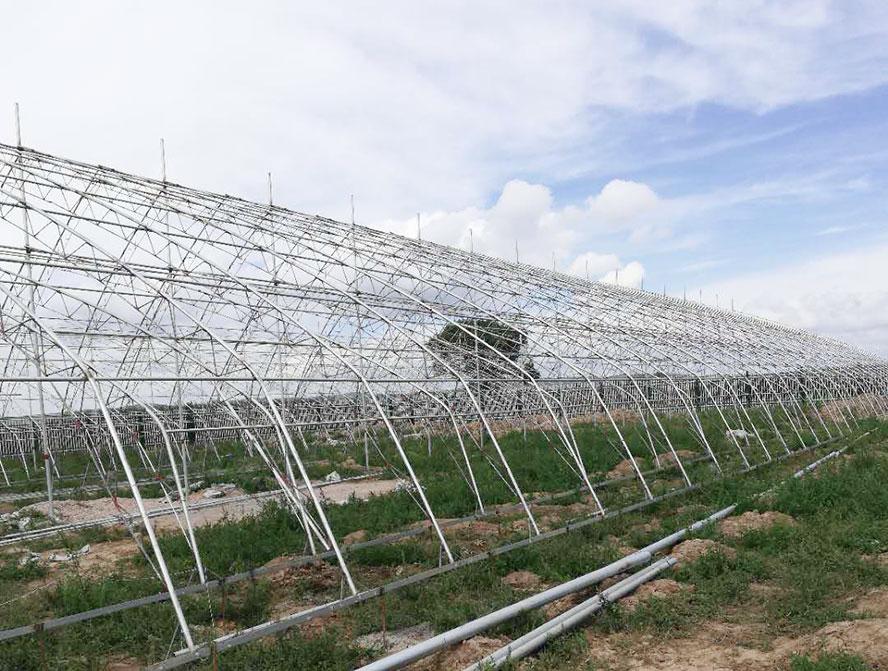 现代农业温室