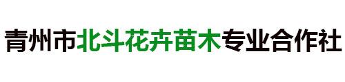 青州市北斗花卉苗木专业合作社