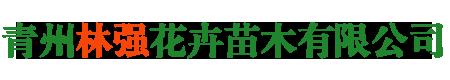 青州林强花卉苗木有限公司