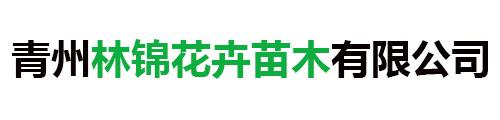 青州林锦花卉苗木有限公司